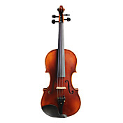 violintine - (v10) 1/4 de haute qualit pour violon en pica massif avec tui / arc