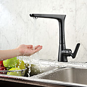 Contemporary Painting Single Handle Centerset Kictchen Faucet