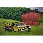 Printed Art Landscape Truck in Weeds by Bob Rouse