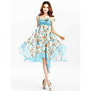 TS Chiffon Print Strap Midi Dress