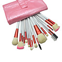 18Pcs Professional High Quality Pink Cosmetic Brush with Free Leather Case